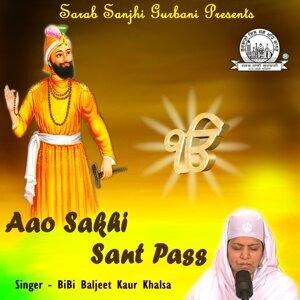 Bibi Baljeet Kaur Khalsa 歌手頭像
