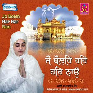 Bibi Kamaljit Kaur Paras 歌手頭像