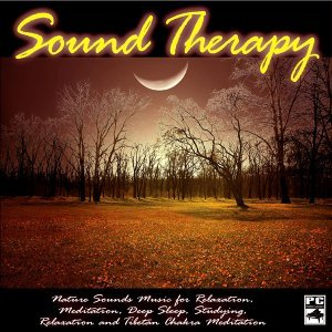 Sound Therapy, Spa, Yoga, Healing Massage, Baby Sleep and Chakra Balancing 歌手頭像