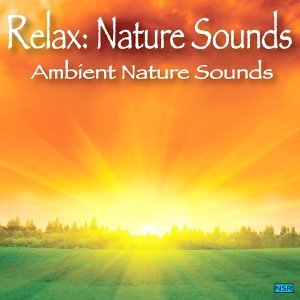 Relax: Nature Sounds 歌手頭像