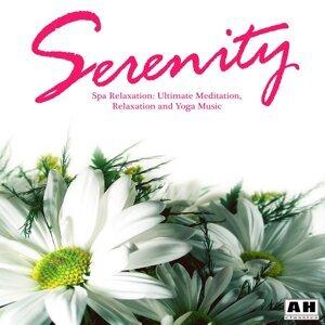 Serenity: Spa Relaxation アーティスト写真