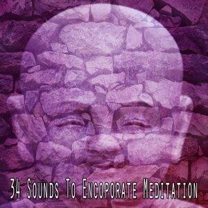 Zen Meditate 歌手頭像