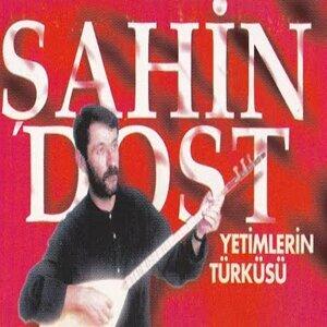 Şahin Dost 歌手頭像