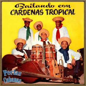 Cardenas Tropical アーティスト写真