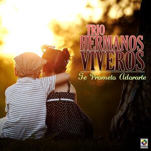 Trio Hermanos Viveros アーティスト写真