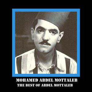 Mohamed Abdel Mottaleb 歌手頭像