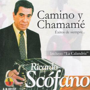 Ricardo Scófano 歌手頭像