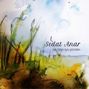 Sedat Anar 歌手頭像