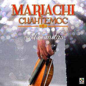 Mariachi Cuauhtemoc アーティスト写真