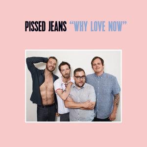 Pissed Jeans 歌手頭像