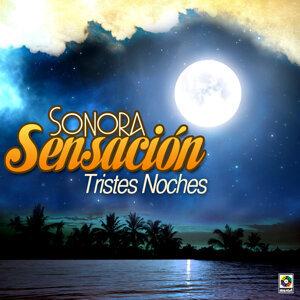 Sonora Sensacion アーティスト写真