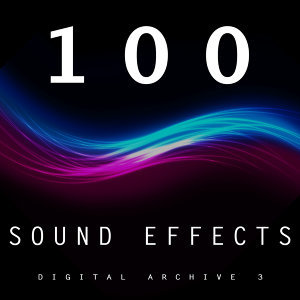 The Digital Sound Effects Group アーティスト写真
