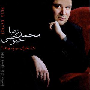 Mohammadreza Eyvazi 歌手頭像
