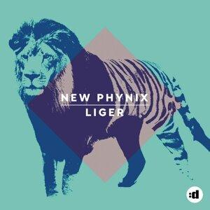 New Phynix アーティスト写真