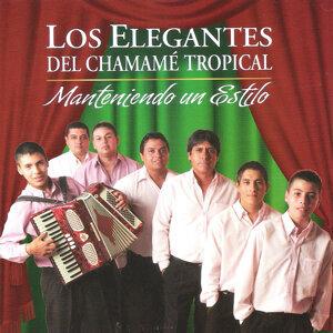 Los Elegantes del Chamamé Tropical 歌手頭像