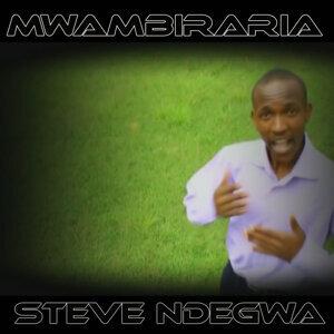 Steve Ndegwa 歌手頭像