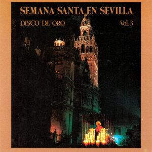 Banda de Musica del Maestro Tejera | Banda de Musica 40 Brigada Tropa del Socorro de la Cruz Roja de Sevilla 歌手頭像