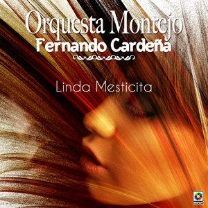 Orquesta Montejo De Fernando Cardeña 歌手頭像