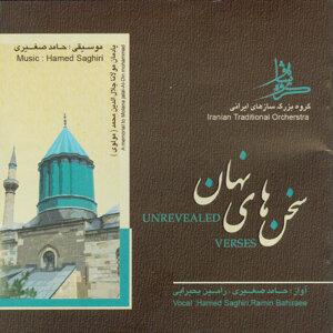 Hamed Saghiri