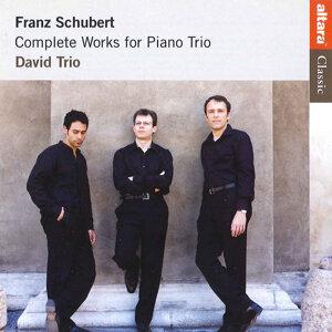 David Trio 歌手頭像
