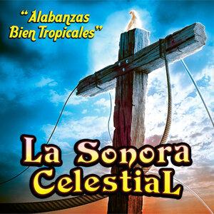 La Sonora Celestial 歌手頭像