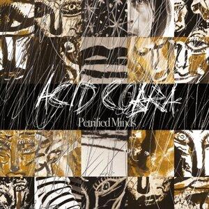 Acid Cobra 歌手頭像