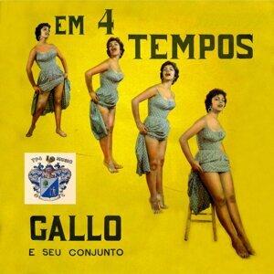 Gallo e Seu Conjunto 歌手頭像