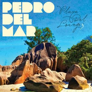 Pedro Del Mar - Playa del Lounge 3 歌手頭像