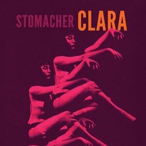 Stomacher
