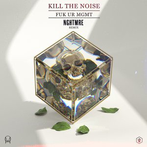 Kill The Noise 歌手頭像