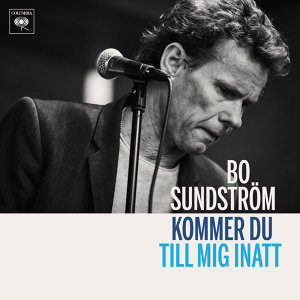 Bo Sundström 歌手頭像