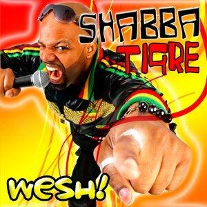 Shabba Tigre 歌手頭像