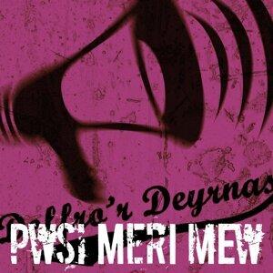 Pwsi Meri Mew 歌手頭像