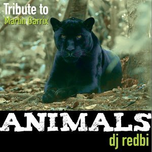 DJ Redbi 歌手頭像