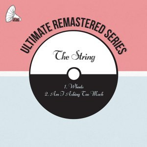The String 歌手頭像
