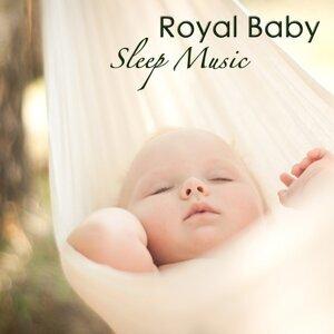 Royal Baby Sleep Music Collective 歌手頭像