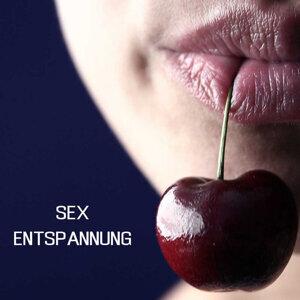 Sex Entspannung Hintergrundmusik Specialists 歌手頭像