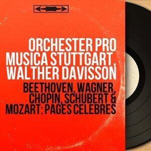Orchester Pro Musica Stuttgart, Walther Davisson 歌手頭像