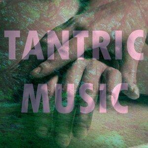 Tantric Music 歌手頭像