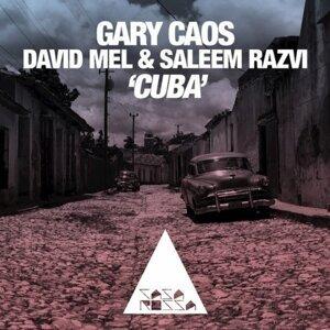 Gary Caos, David Mel, Saleem Razvi 歌手頭像