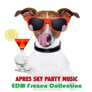 Apres Ski Party Music EDM Collective 歌手頭像