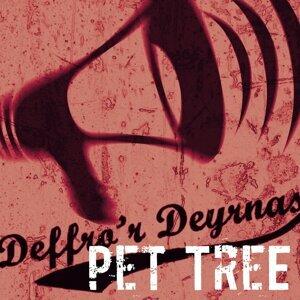 Pet Tree 歌手頭像