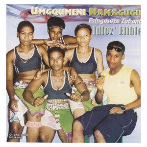 Umgqumeni Namagugu 歌手頭像