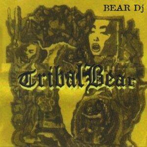 Bear DJ 歌手頭像