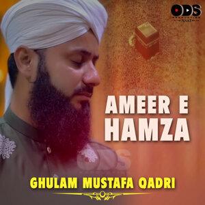 Ghulam Mustafa Qadri 歌手頭像