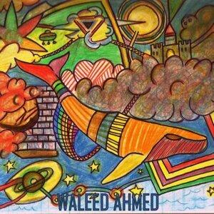 Waleed Ahmed 歌手頭像