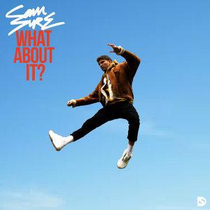 Sam Sure 歌手頭像