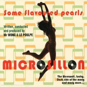 Microsillon 歌手頭像