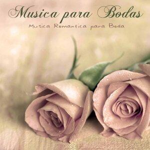 Musica Piano Para Bodas Specialist 歌手頭像