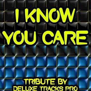 Deluxe Tracks Pro 歌手頭像